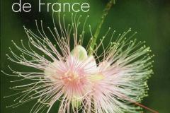 Art des Jardins - Les plus belles créations de France