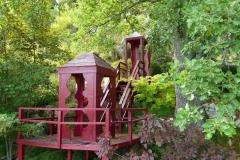 Observatoire de végétaux en été