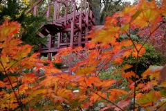 Pavillon en bois couleurs d'automne